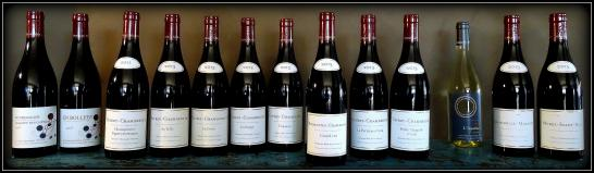 Domaine Marchand-Grillot